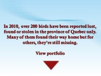 FICHIERS avis de recherches 2010e