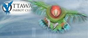 ottawa parrot club