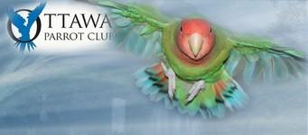 ottawa-parrot-club