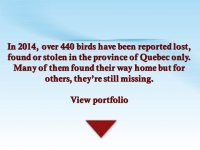FICHIERS avis de recherches 2014e