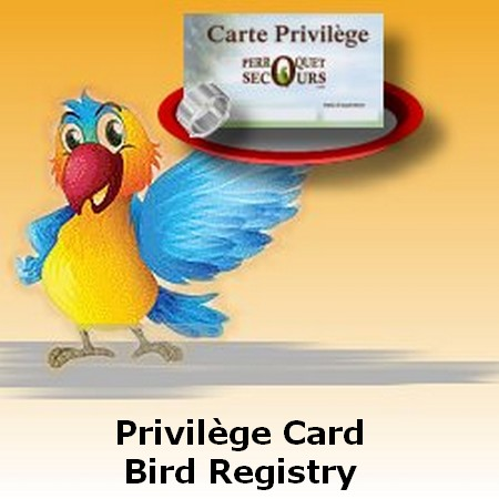privilege-card1