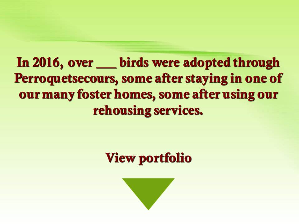 FICHIERS adoptions 2015-en