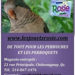 Rosie boutique en ligne-2