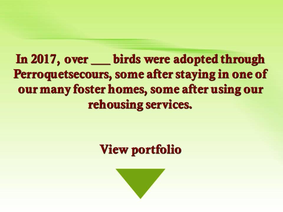 fichiers-adoption-2017-en