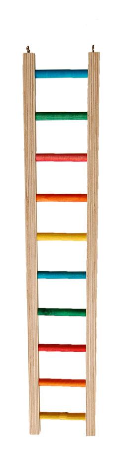 Échelles/Ladders