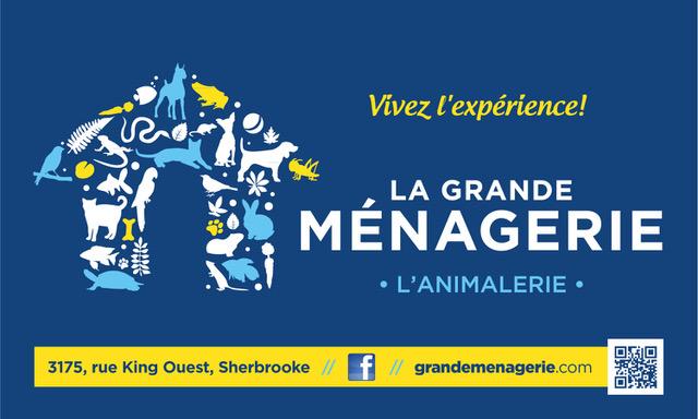 GRANDEMEN-BannièreVinyle2013