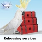 rehousing services
