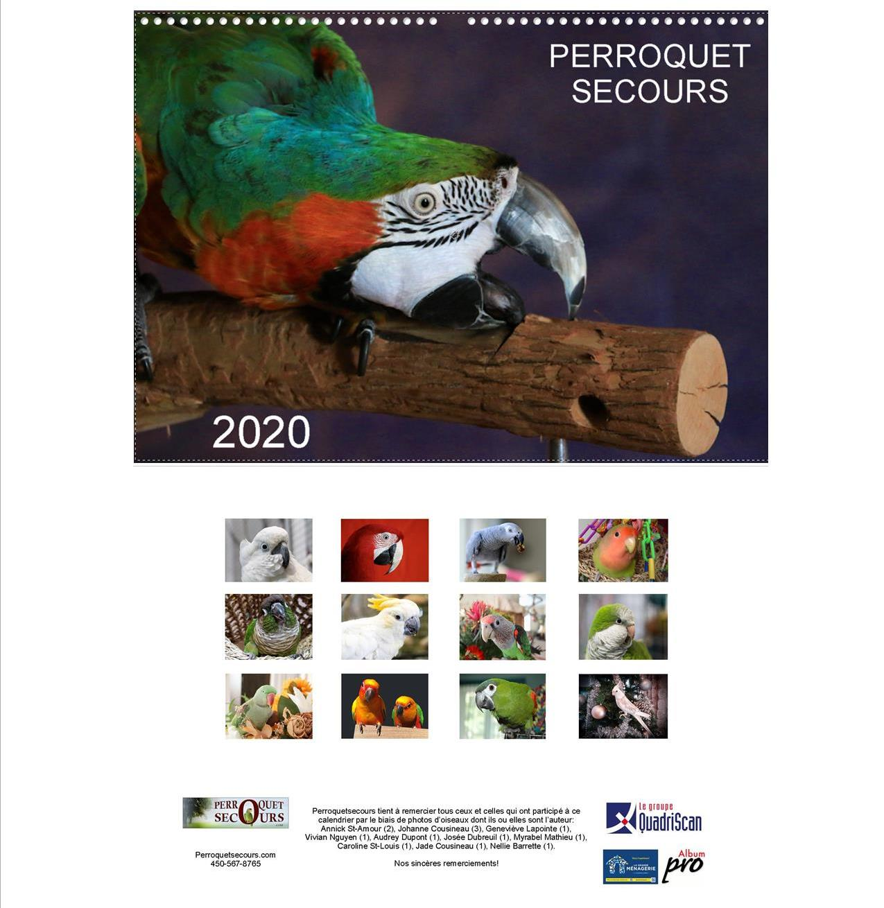 Calendrier Mural Grand Format.Calendrier Mural Grand Format 2020 French Only