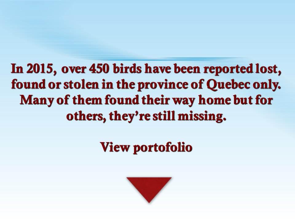 FICHIERS avis de recherches 2015