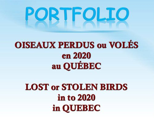 Avis de recherche 2020 Wanted Notices