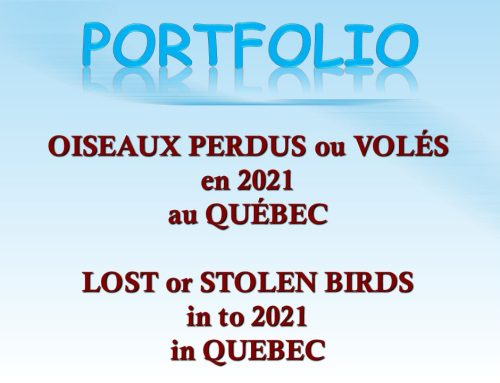 Avis de recherche 2021 Wanted Notices
